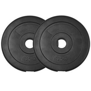 Standard Vinyl Weight Plates Pair (1KG x 2)-0